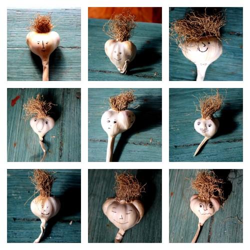 garlic people1